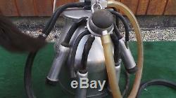 Grande Delaval Pail Bucket Machine À Traire Milker Goat Cow Acier Inoxydable