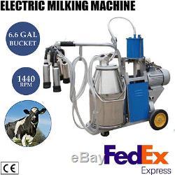 Machine À Traire De Vache Laitière Type À Piston Trayeur Pour La Vache De Vache Traite 110v + Us Plug