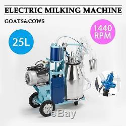 Machine À Traire Électrique De Trayeuse De L'acier Inoxydable 6.6gal Pour Les Vaches De Boucherie